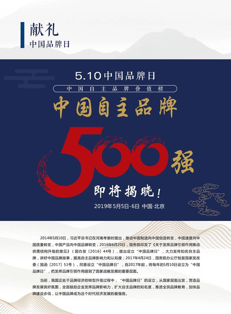 中国品牌峰会画册-单页-02.jpg